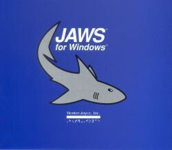 Jaws Professional - Screenreader (VIDEBIS  Edition)